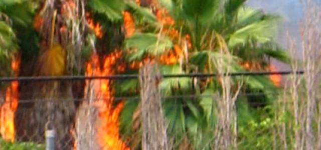Wenns brennt auf Maui