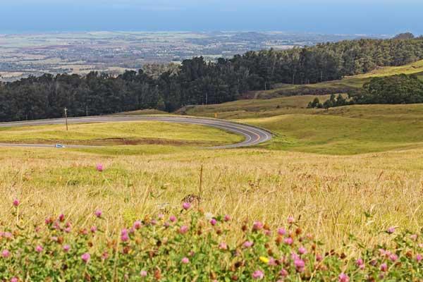 beautiful-maui-road