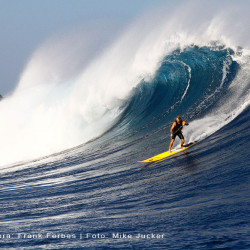 Big Wave Surfing Maui